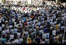 نماز عیدسعید فطر_9